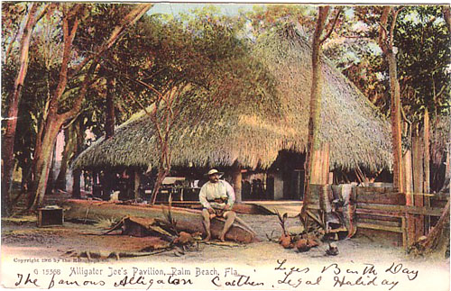 Palm Beach - Alligator Joes Pavilion G15368