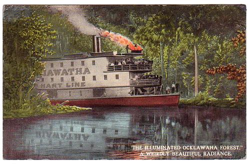 Steamers Iluminated Ocklawaha Forest